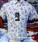 Chemises élégante et fashion